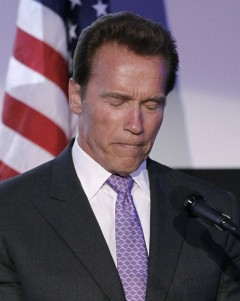 Schwarzenegger's Affair Doesn't Interest This Writer